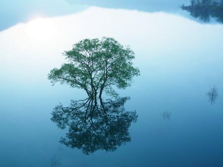 西和賀の錦秋湖